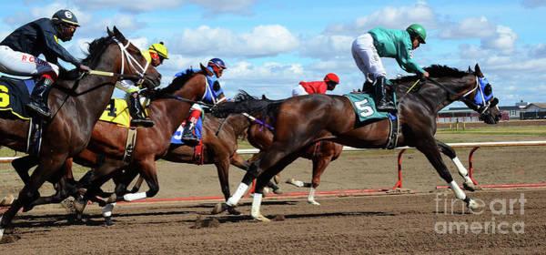 Lethbridge Photograph - Horse Power 6 by Bob Christopher