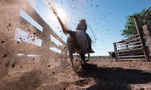 Roping Photograph - Horse Power by Steve Gadomski