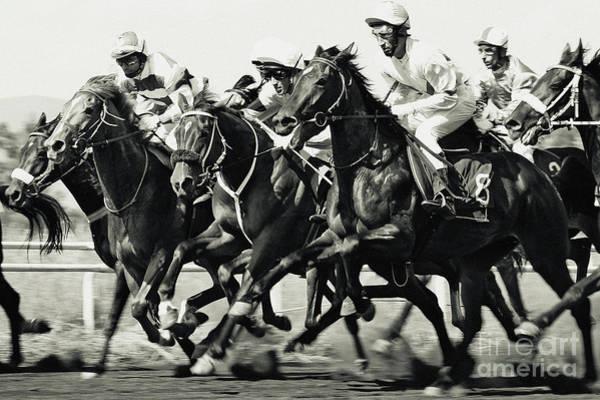 Photograph - Horse Racing by Dimitar Hristov