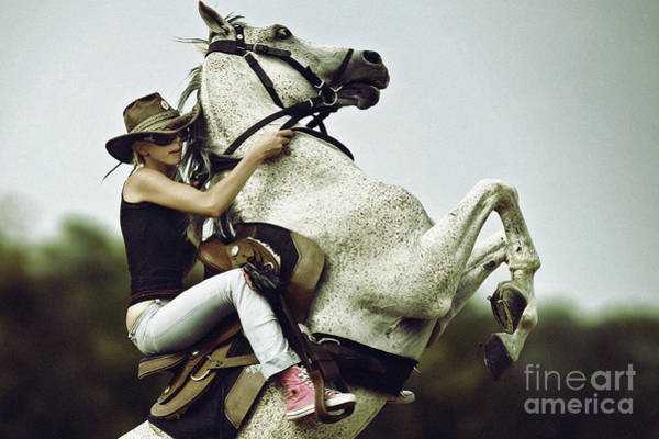 Photograph - Horse Rearing With Girl by Dimitar Hristov