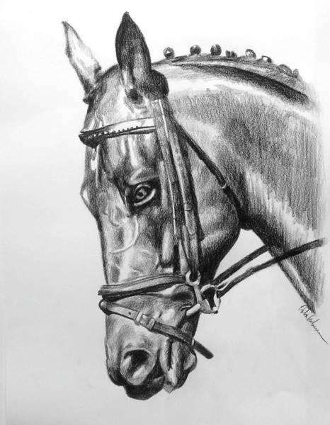 Wall Art - Drawing - Horse by Robert Korhonen