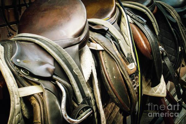 Photograph - Horse Saddle by Dimitar Hristov