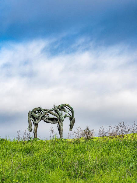 Photograph - Horse Sculpture In The Pasture by Robin Zygelman