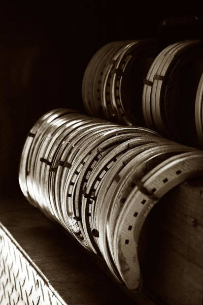Photograph - Horse Shoes In Sepia by Angela Rath