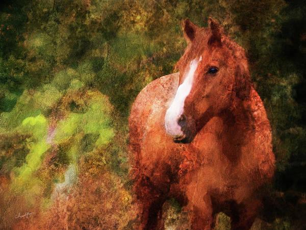 Digital Art - Horse Study #10 by Everlasting Equine Horse Art