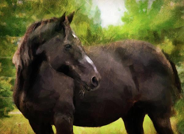 Digital Art - Horse Study #11 by Everlasting Equine Horse Art
