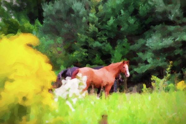 Digital Art - Horse Study #12 by Everlasting Equine Horse Art