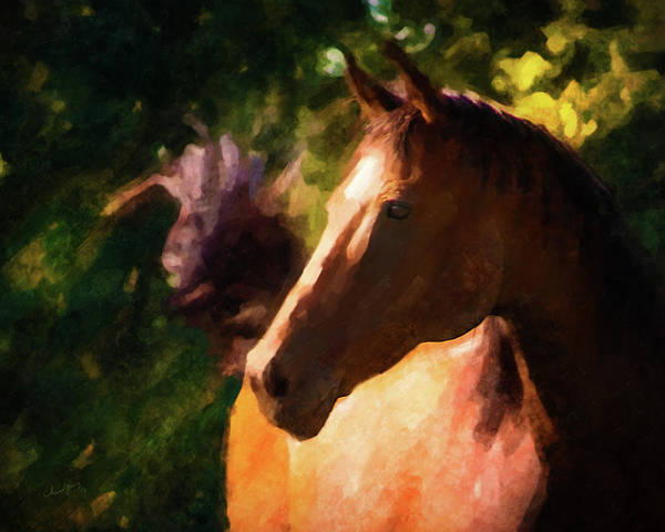 Photograph - Horse Study #13 by Everlasting Equine Horse Art