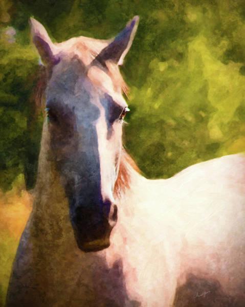 Digital Art - Horse Study #14 by Everlasting Equine Horse Art