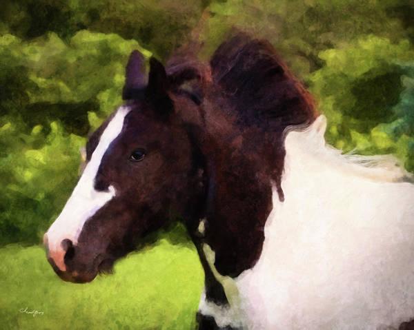Digital Art - Horse Study #15 by Everlasting Equine Horse Art