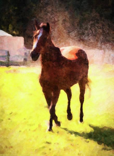 Digital Art - Horse Study #18 by Everlasting Equine Horse Art