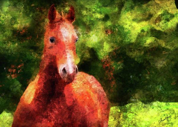 Digital Art - Horse Study #2 by Everlasting Equine Horse Art
