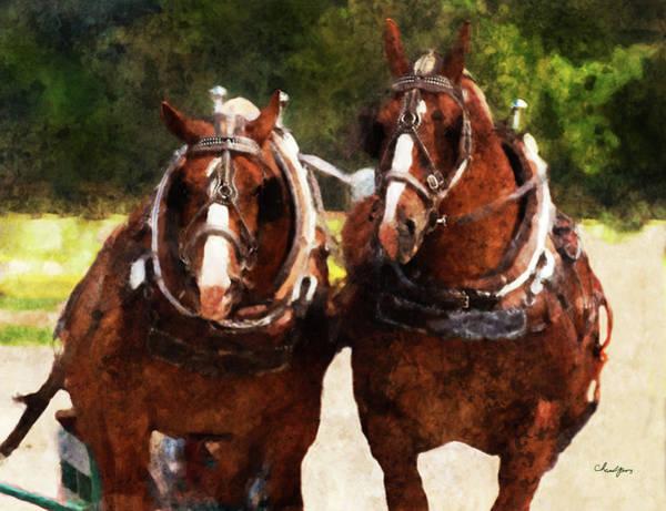 Digital Art - Horse Study #20 by Everlasting Equine Horse Art