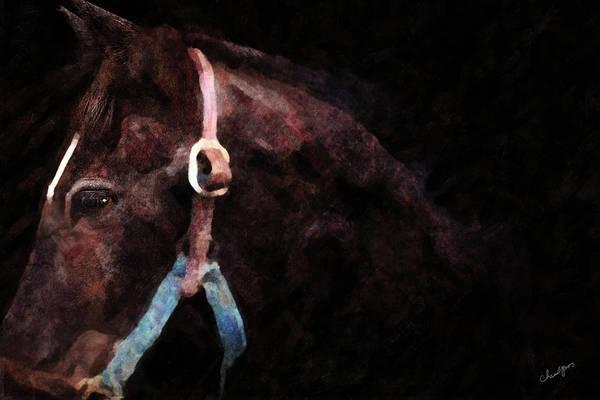 Digital Art - Horse Study #3 by Everlasting Equine Horse Art