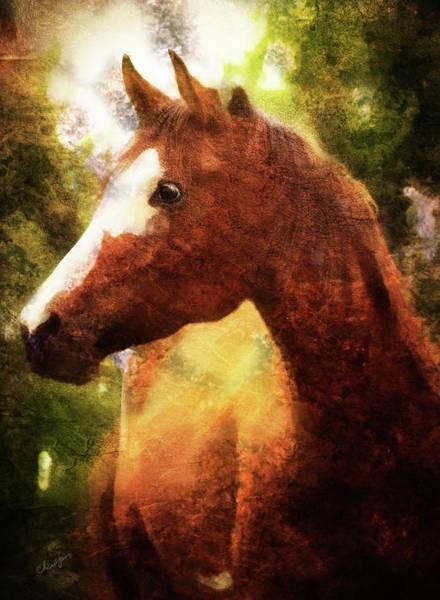 Digital Art - Horse Study #9 by Everlasting Equine Horse Art