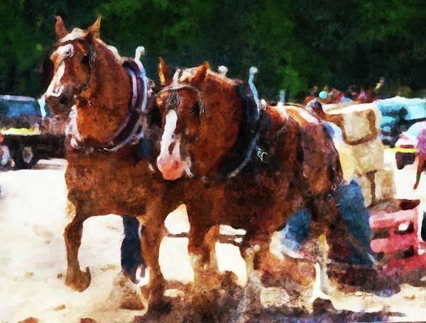 Digital Art - Horse Study #23 by Everlasting Equine Horse Art