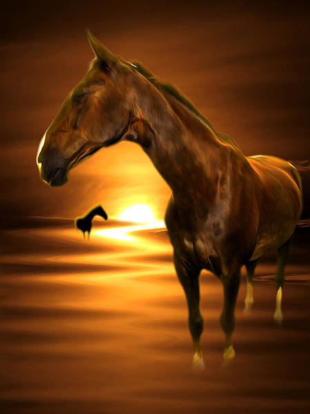 Mamal Digital Art - Horse by Svetlana Sewell