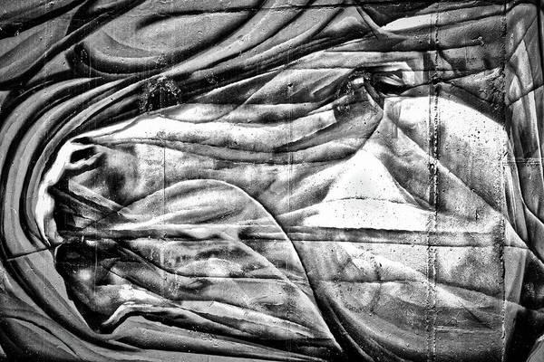 Photograph - Horse Wall Art #2 by Stuart Litoff