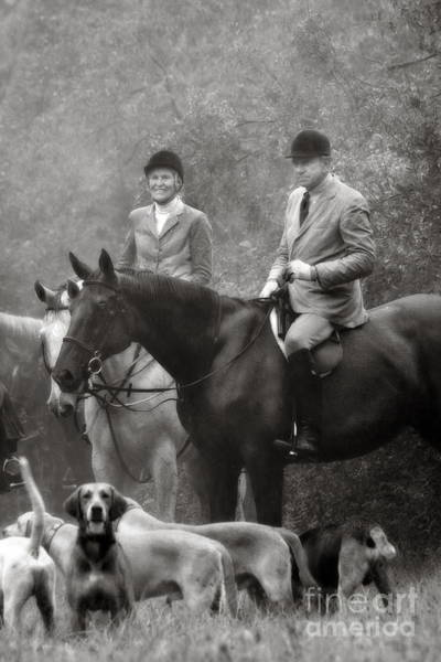 Photograph - Horses And Hounds 2 In Black And White by Angela Rath