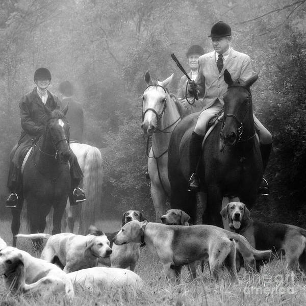 Photograph - Horses And Hounds 3 In Black And White by Angela Rath
