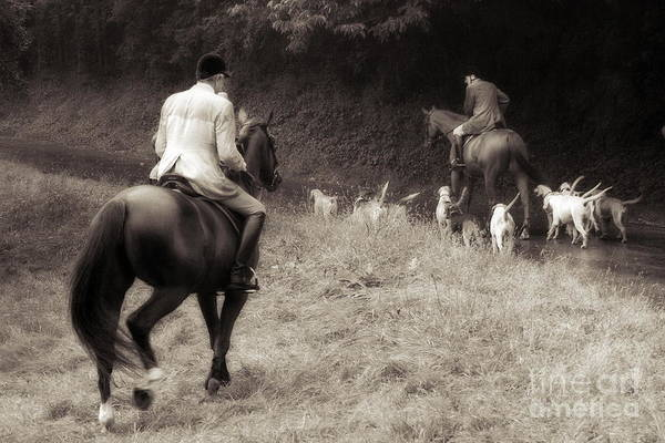 Photograph - Horses And Hounds In Black And White by Angela Rath