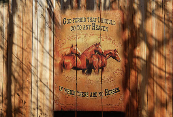 Wall Art - Photograph - Horses by Donna Kennedy