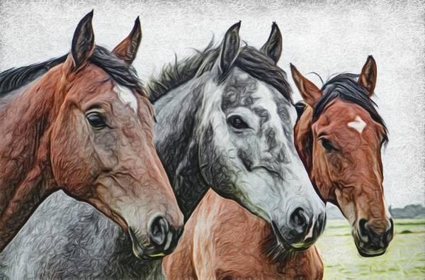 Lurksart Painting - Horses - Id 16217-202800-9448 by S Lurk