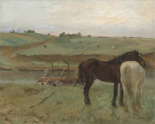 Wall Art - Painting - Horses In A Meadow by Edgar Degas