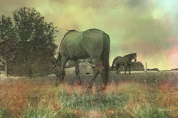 Photograph - Horses On The Farm 6034 by Ericamaxine Price