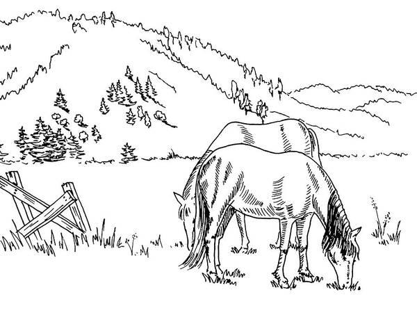 Farmer Drawing - Horses On The Ranch Ink Drawing Iv by Irina Sztukowski