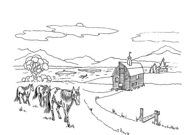 Wall Art - Drawing - Horses On The Ranch Ink Drawing Vi by Irina Sztukowski