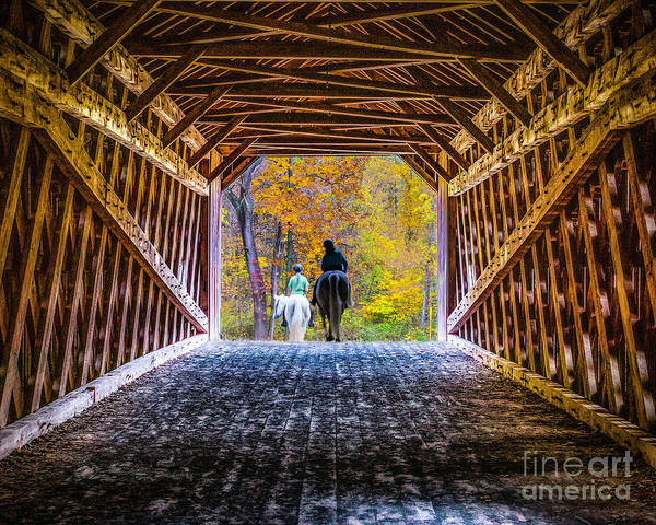 Photograph - Horses On The Schofield Ford Bridge by Nick Zelinsky