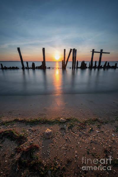 Sandy Hook Wall Art - Photograph - Horseshoe Crab Sunset  by Michael Ver Sprill