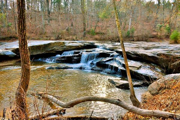 Photograph - Horseshoe Falls At Musgrove Mill Historic Site Clinton Sc by Lisa Wooten