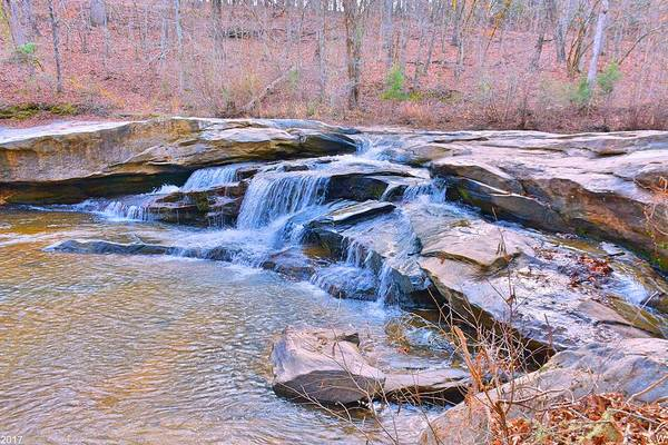 Photograph - Horseshoe Falls At Musgrove Mill Historic Site by Lisa Wooten