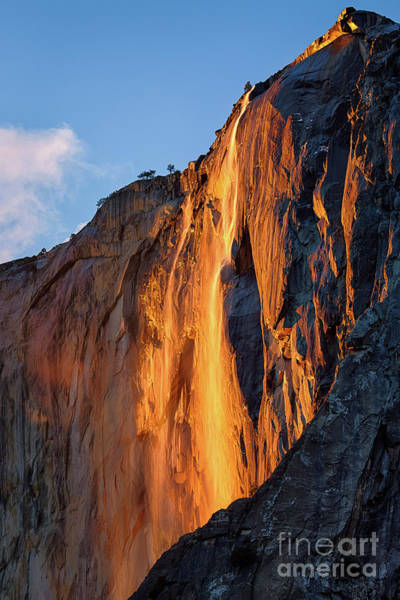 Photograph - Horsetail Falls by Anthony Bonafede