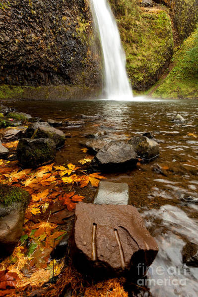 Photograph - Horsetail Falls  Autumn Time by Beve Brown-Clark Photography