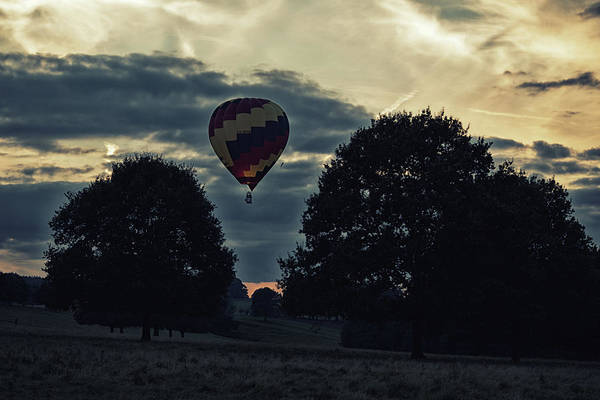 Photograph - Hot Air Balloon Between The Trees At Dusk by Scott Lyons
