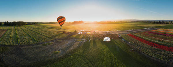 Wall Art - Photograph - Hot Air Balloon Taking Off At Sunrise by William Freebilly photography