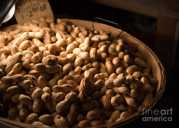 Photograph - Hot Peanuts by Julia Rigler