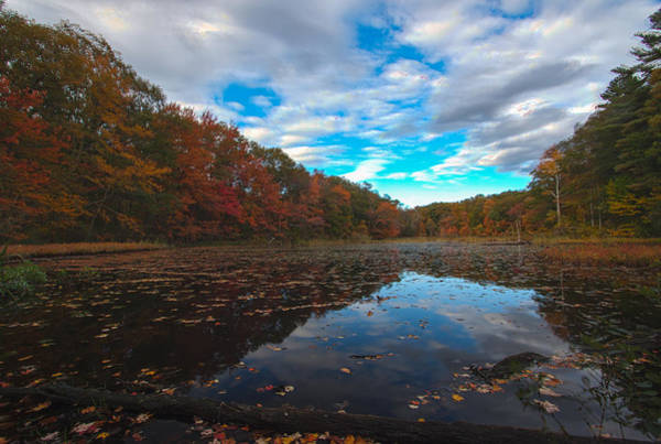 Photograph - Houghton's Pond Spillover by Brian MacLean