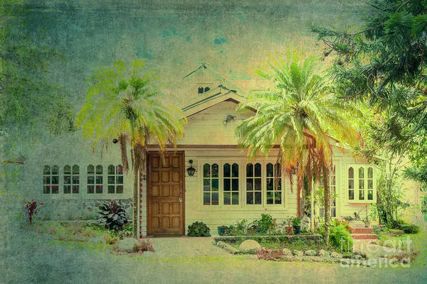 Photograph - House Behind Two Palm Trees by Helga Koehrer-Wagner