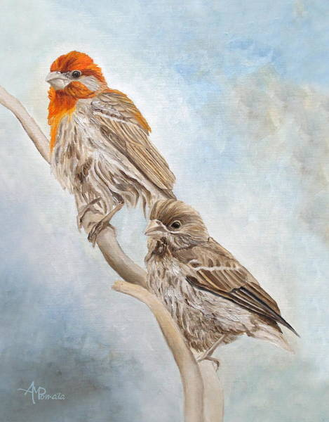 Painting - House Finch Couple by Angeles M Pomata