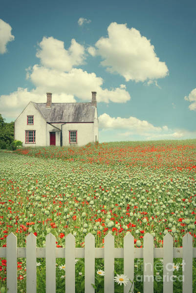 Picket Fence Photograph - House In The Countryside by Amanda Elwell