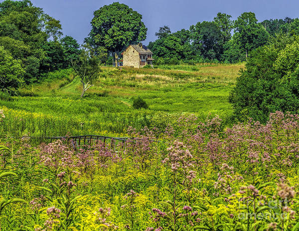 Wall Art - Photograph - House In The Meadow  by Nick Zelinsky