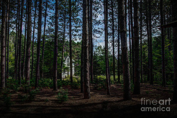 Photograph - House In The Pines by Roger Monahan