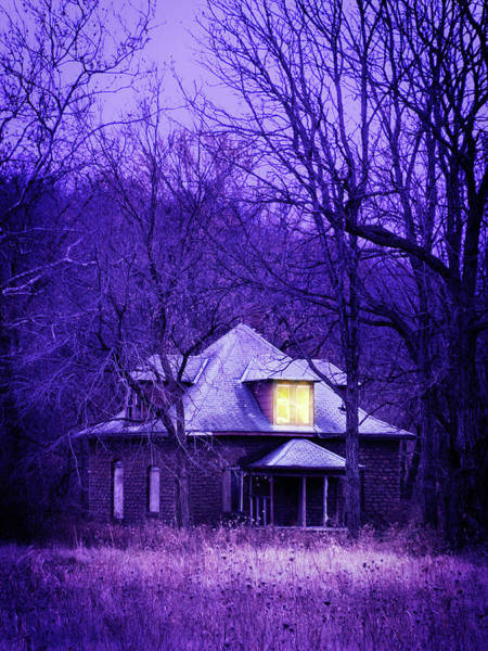 Photograph - House In The Woods by Bud Simpson