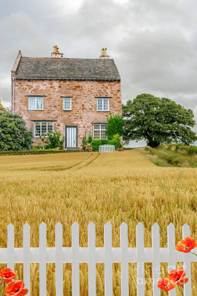 Picket Fence Photograph - House In Wheat Field by Amanda Elwell