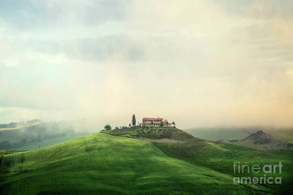 Cypress Photograph - House Of Rising Sun by Evelina Kremsdorf