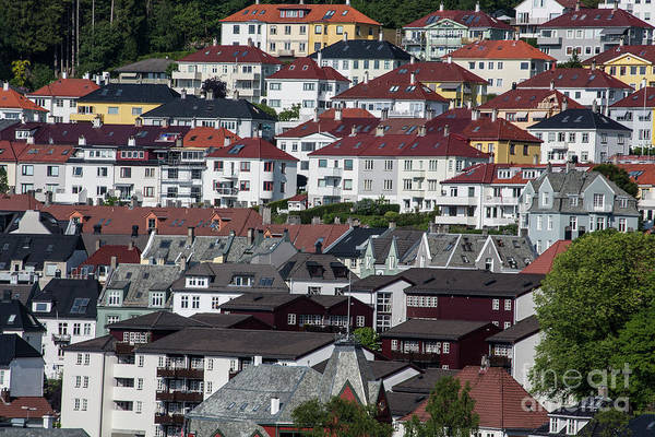 Wall Art - Photograph - Houses In Bergen, Norway by Sheila Smart Fine Art Photography